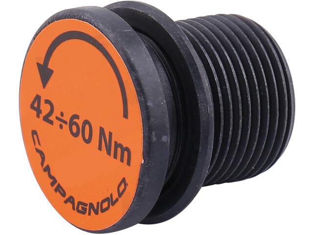 Campagnolo Ultra Torque Crankbout voor Super Record